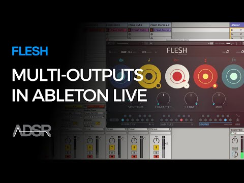 FLESH Quick Intro & Multi-Outputs in Ableton Live