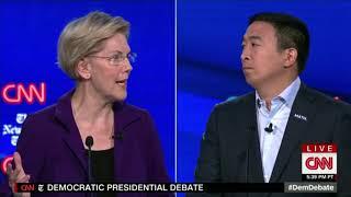 Why Nobody Attacks Yang - Elizabeth Warren vs Andrew Yang