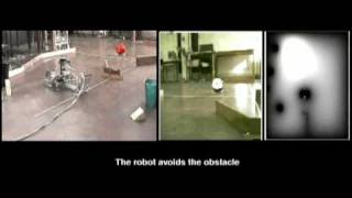 Mobile Pneumatic Robot with Ultrasonic Sensors and an active Camera