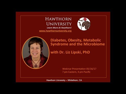 Diabetes, Obesity, Metabolic Syndrome and the Microbiome with Dr. Liz Lipski