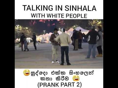 Talking in  sinhala  with white people 😁😁 සුද්දො එක්ක  සිංහලෙන්  කතා කිරීම..