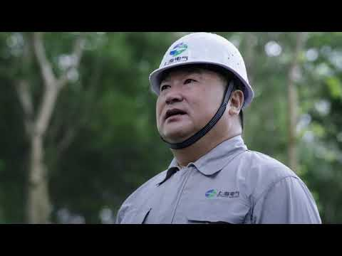 The Video About the Shanghai Electric T&D Group(2019)