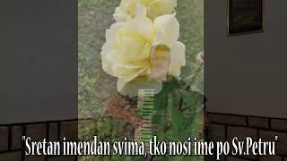PJESMA O PETROVU-Video 2020 Uživo