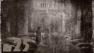 STALKER Тайные тропы 2 + Autumn Aurora 2 №25 Финал( правильная концовка).