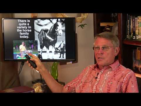 Dr. Kent Hovind: Lies in the textbooks -5/24/18