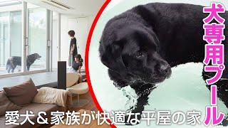 【注文住宅】中庭に犬専用プール!愛犬と家族が快適な平屋の家