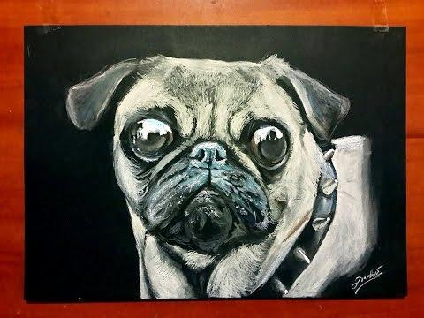 DOG PUG SPEED DRAWING / Dibujando un perro (Pug) en camara rapida