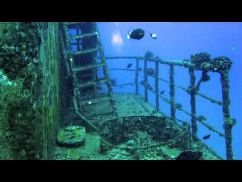 adrienne rich's diving into the wreck Diving into the wreck - first having read the book of myths.