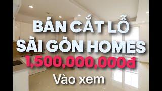 Review căn hộ sài gòn homes 48m2 PN mới bàn giao giá CĐT:1.1 tỷ