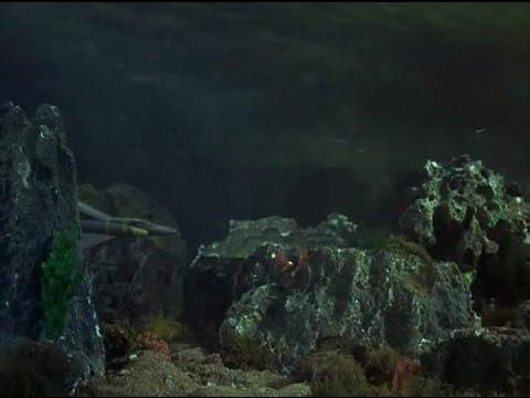 STINGRAY S01 E3 Sea of Oil