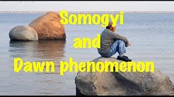 Medical Video Lecture: Somogyi effect Vs Dawn Phenomenon