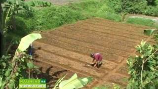 Costales Nature Farms featured in Maunlad na Agrikultura.mpg thumbnail