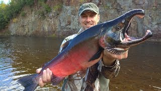 River Monster Fish! Fishing and adventure on the river in the taiga. Part 2