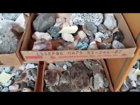 Massive 40 Year Collection of Minerals, Rocks, Crystals, Geodes, etc.