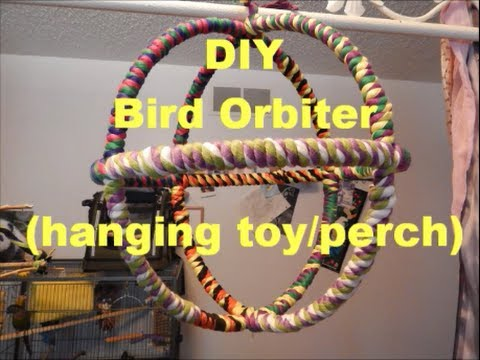 Diy Bird Orbiter Hanging Toy Perch