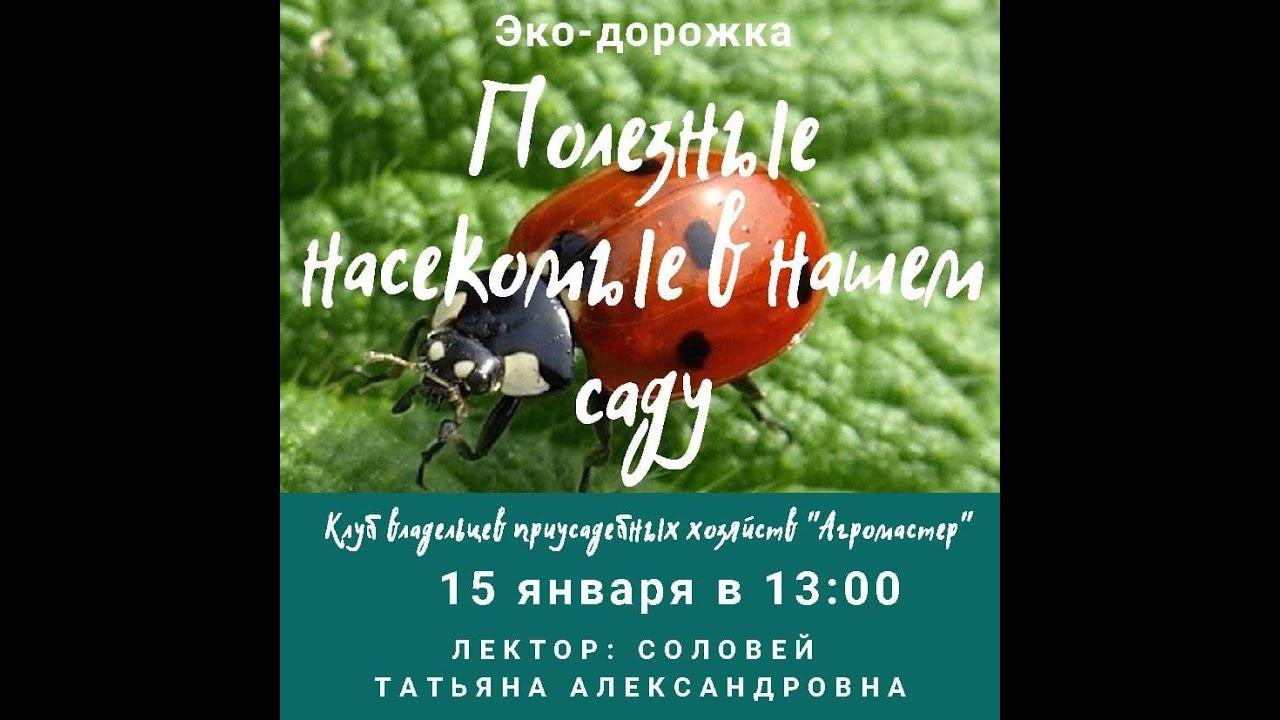 """Онлайн-лекция """"Полезные насекомые в нашем саду"""" 15.01.21"""