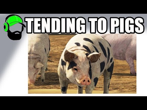 Farming Simulator 17 - Tending to animals - Pigs