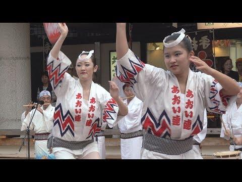 「埼玉葵連」第35回南越谷阿波踊り(2019.8.24)
