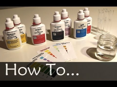 How To Testing Your Aquarium Water Youtube