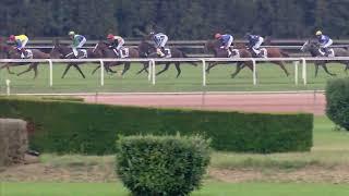 Vidéo de la course PMU PRIX DE PIMLICO