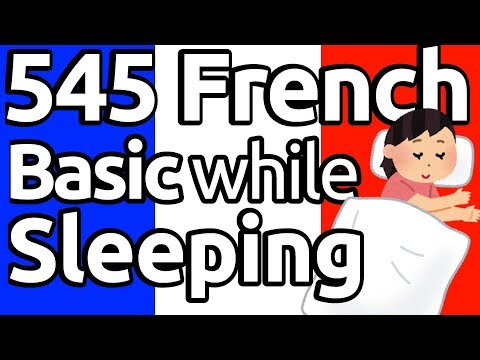 Learn 545 French Basic Vocabs And Phrases While You Sleep