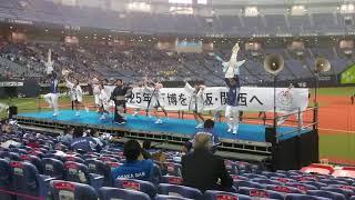 2018.11.1 第44回社会人野球日本選手権 vs 鷺宮製作所 グラウンド整備中...