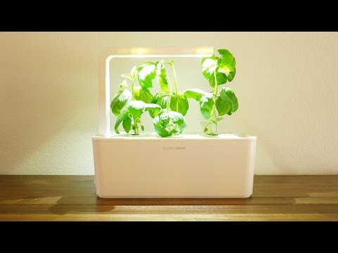 Click and Grow smart garden review