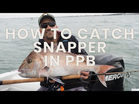 How to catch snapper in Port Phillip Bay- Hooked Up Video