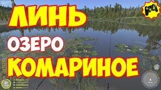 Русская рыбалка 4 ЛИНЬ Комариное озеро Алексей Майоров