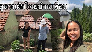 พาชมสวนผักไทยในเยอรมัน ทัวร์รอบบ้านเพื่อนสาวชาวไทย