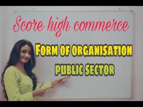 Form of I Organisation I Public Sector I Class 11th I Business Studies फॉर्म ऑफ़ ओर्गनैजेसन I