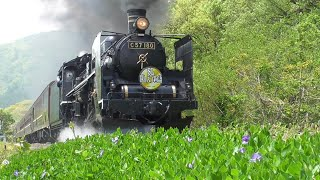 『 C57180+12系客車・快速 SLばんえつ物語』2021/5/8(JR磐越西線・尾登駅~荻野駅)