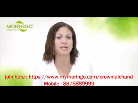 Moringo Organics Lalchand Gaur @08104164736 - 8875889999  https://www.mymoringo.com/crownlalchand