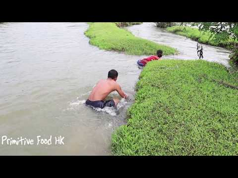 Primitive life: Go hunting catch fish and skills to catch fish by hand - Eating delicious