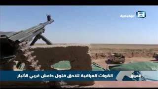القوات العراقية تلاحق فلول داعش غربي الأنبار