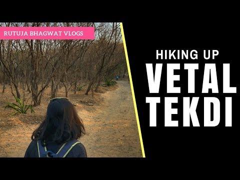 Vetal Tekdi (ARAI Hill) Pune Vlog || I Climb Up a Tree?