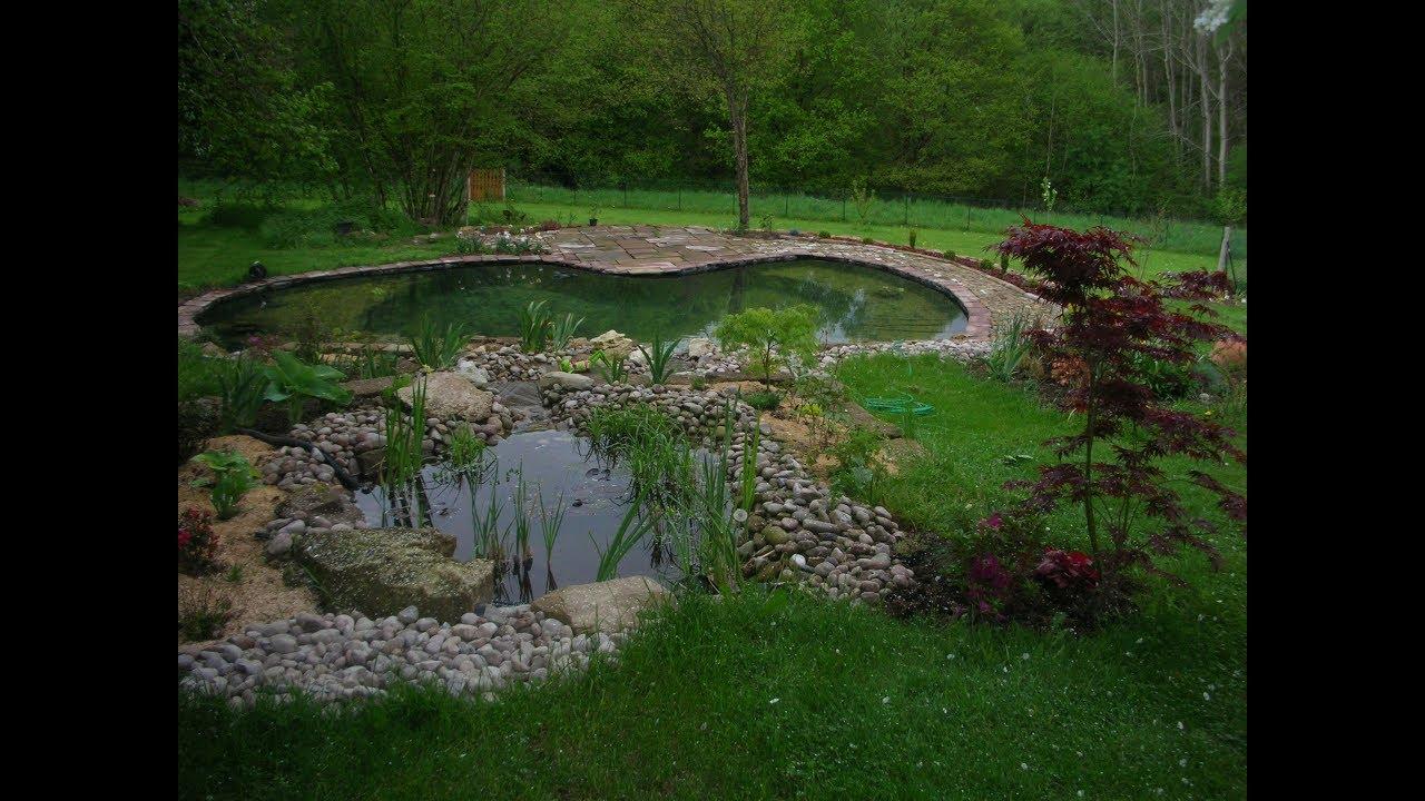 Transformer Son Bassin En Piscine bassin piscine naturelle