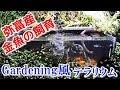 屋外ガラス金魚水槽【花壇の中の弥富産金魚】/Gardening風テラリウム