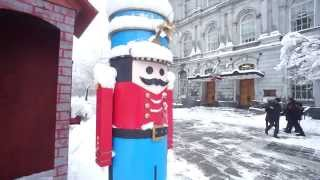Austerity Security Measures - Decoy Sentries At Montreal City Hall (00008)
