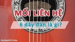 Bài 5: Mối liên hệ giữa 6 dây đàn guitar | Cơ bản cho người mới học đàn guitar