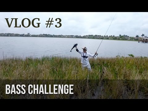 Bass Fishing Challenge!  - BlacktipH vs HECZWE vs LunkersTV