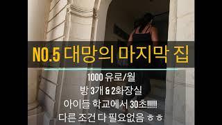 몰타현지서비스- 5개의 아파트 Viewing 후 최종 …