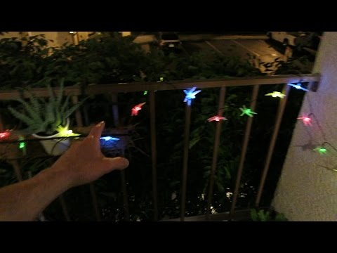 Solar LED DragonFly Lights For Garden Patio Home   Review U0026 Unboxing