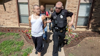 ICE arrests more than 1,000 gang members
