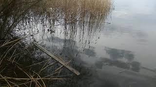 Белгородское водохранилище 7 мая 2021 рыбалка