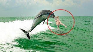 Скачать Дельфин в одно движение рассек ноги ребенку тем самым подарив ей жизнь