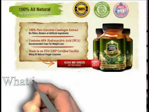 Why Is Garcinia Cambogia Supplement The Hottest Diet Today?
