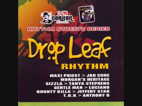 Drop Leaf Riddim Mix (2005) By DJ.WOLFPAK