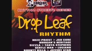 Drop Leaf Riddim Mix (2005) By DJ.WOLFPAK