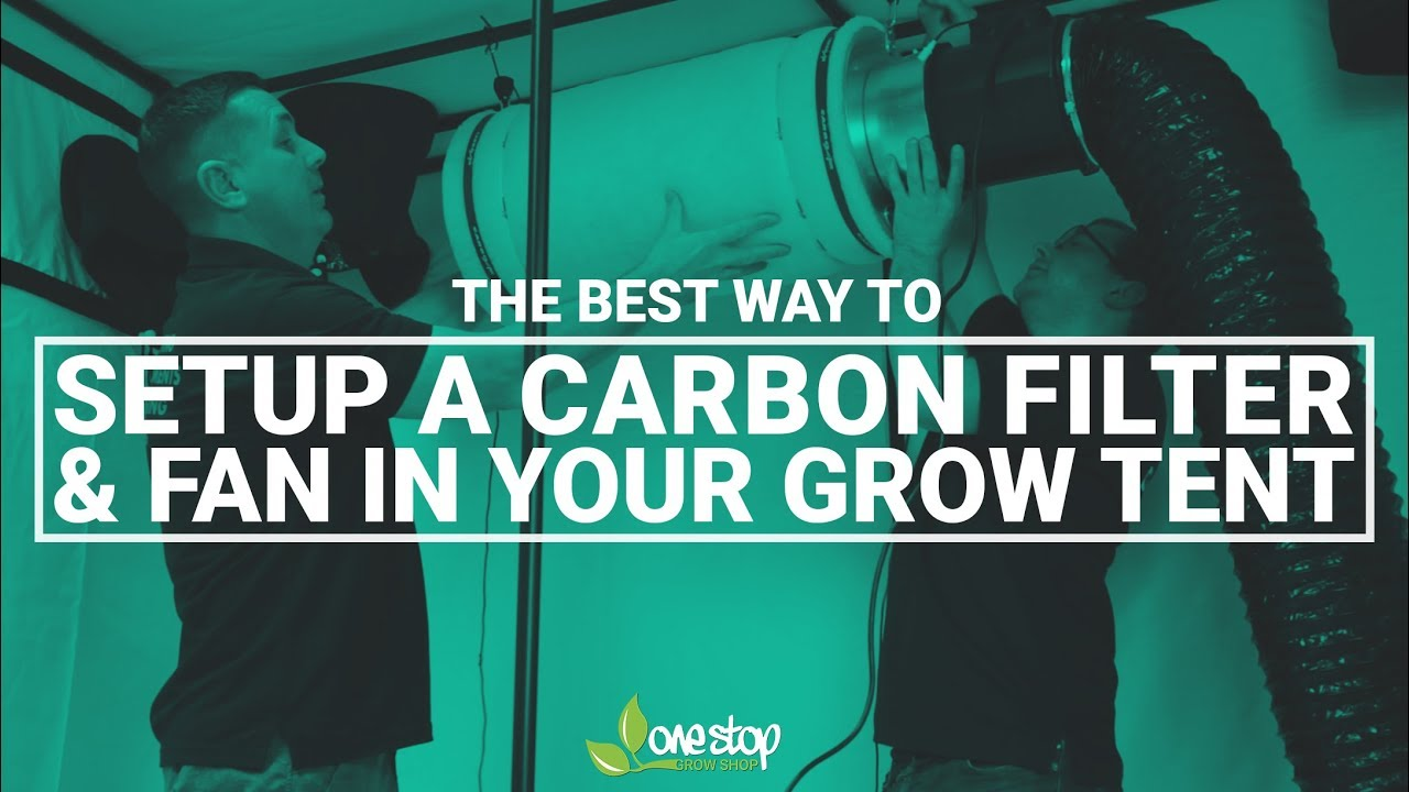 the best way to set up a carbon filter and fan in your grow tent